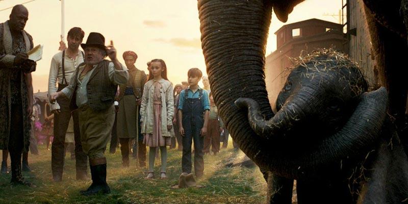 Dumbo esta bajo el cuidado de la familia del circo de los medici